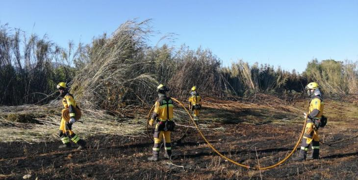 Un incendi en el Torrent del Pont d'en Blai crema 0,2 hectàrees de canyís
