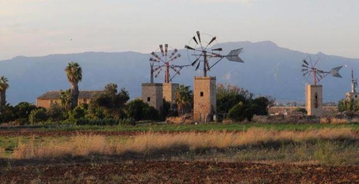Els pagesos demanen «solucions immediates» davant la manca d'aigua al Pla de Sant Jordi