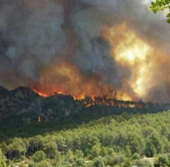 Llancen una campanya contra incendis centrada en el món rural
