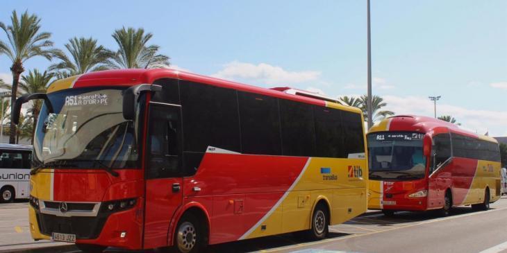 El TIB incrementa les freqüències dels autobusos interurbans a partir d'aquest dilluns