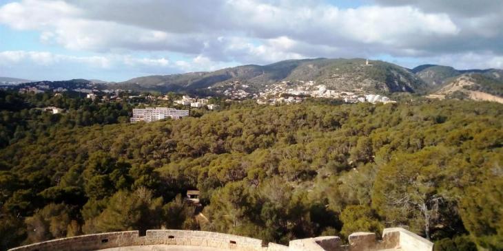Les zones verdes de Palma passaran de 6,2 a 10 metres quadrats per resident en 20 anys