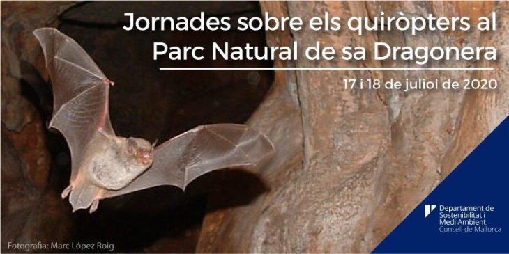 El Consell de Mallorca presenta unes jornades sobre els ratpenats de Sa Dragonera