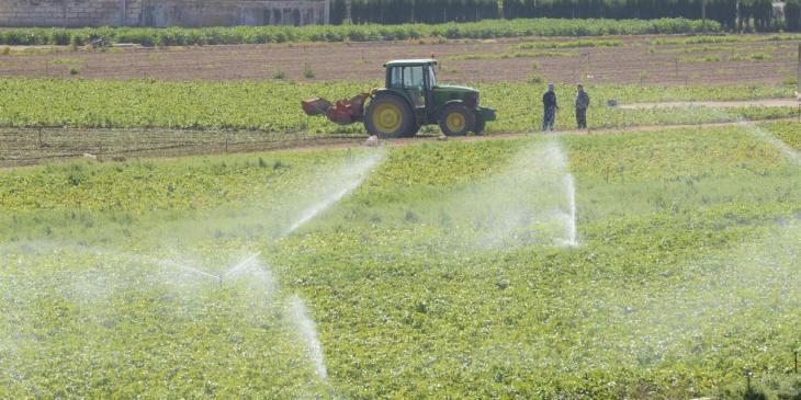 Cooperatives Agroalimentàries presenta al·legacions al decret de zones vulnerables per contaminació de nitrats
