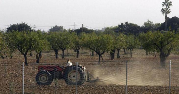 Unió de Pagesos reclama als ajuntaments que incloguin en els pressuposts una partida per als agricultors