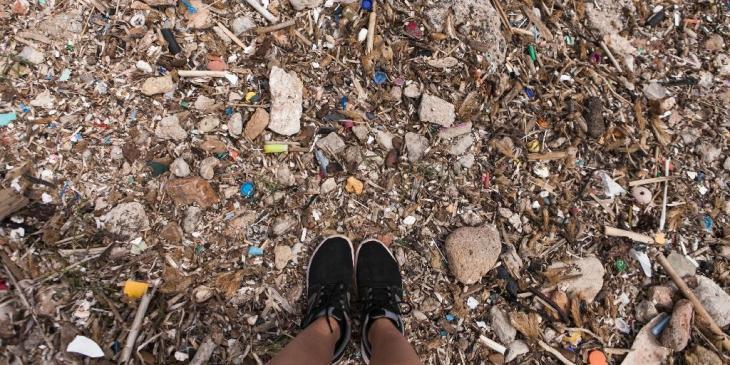 El GOB Menorca posa en marxa un programa «d'adopció» de platges