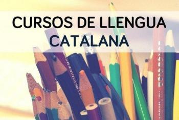 L'OCB reclama «un esforç a les institucions» per incrementar l'oferta formativa en català