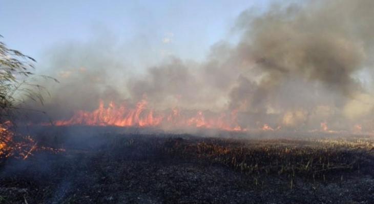 Els focs declarats a s'Albufera continuen cremant