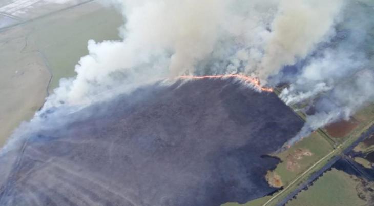 Les imatges més impressionants i colpidores dels incendis a s'Albufera