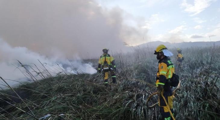 Controlen l'incendi forestal de s'Albufera i ja investiguen si ha estat intencionat