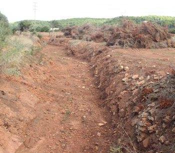 El GOB Menorca lamenta les labors que duu a terme Medi Ambient en els torrents