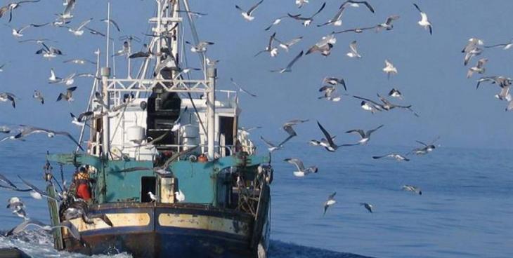 El GOB discrepa de la decisió d'Agricultura en la disminució de dies de pesca d'arrossegament