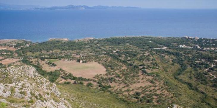 El GOB considera «inadequades» les dues zones d'acampada projectades a Artà